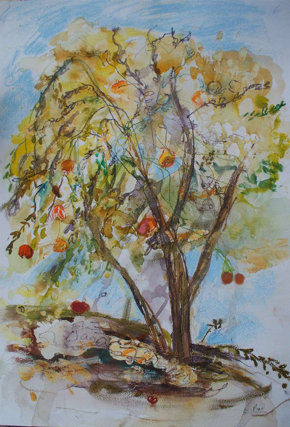Sicilian Fruit Tree in Autumn